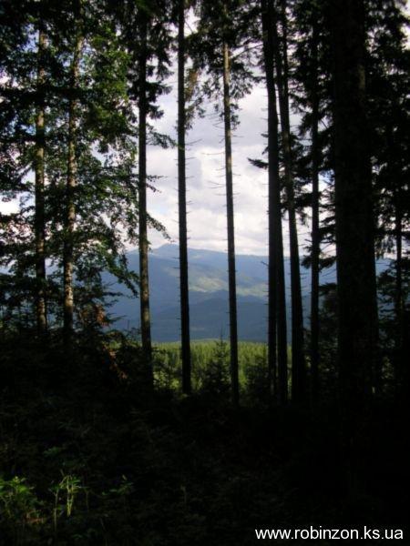 Карпаты 2005