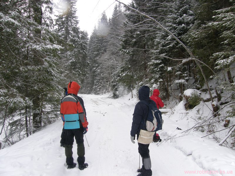 Зимние Карпаты 2010
