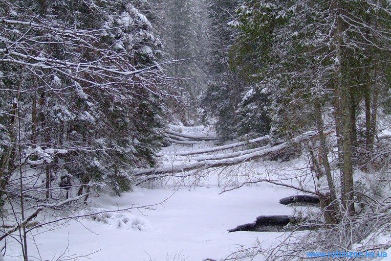 Замерзшее русло карпатской реки, 31 января 2010
