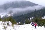 Карпаты во всей красе, 31 января 2010