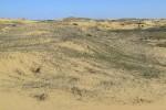 ПВД в Алешковские пески 18.04.2010