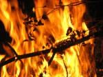 Кодовство огня